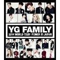YG FAMILY 2014 WORLD TOUR:POWER IN JAPAN
