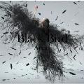 Black Bird/Tiny Dancers/思い出は奇麗で<通常盤>