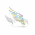 翼を持つ者 ~Not an angel Just a dreamer~ [CD+DVD]