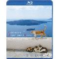 エーゲ海・猫が暮らす癒しの島