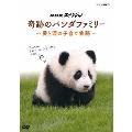 NHKスペシャル 奇跡のパンダファミリー ~愛と涙の子育て物語~