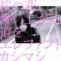 桜の花、舞い上がる道を [CD+DVD]<初回限定盤A>