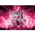 EXILE SHOKICHI LIVE TOUR 2019 UNDERDOGG [2Blu-ray Disc+フォトブック]<初回生産限定盤>