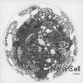 Wolves [CD+DVD]<初回盤>