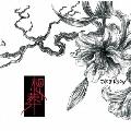 想葬 [CD+DVD]<初回限定盤:Btype>