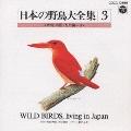日本の野鳥大全集3 本州・四国・九州編II