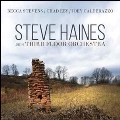 Steve Haines and the Third Floor Orchestra