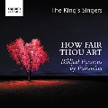 How Fair Thou Art - Biblical Passions by Palestrina