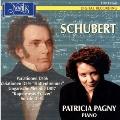 シューベルト: 変奏曲 D.156、変奏曲 D.576「ヒュッテンブレンナー」、ピアノ・ソナタ第16番