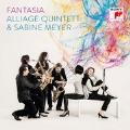 Fantasia - Borodin, Stravinsky, Dukas, Bernstein, Shostakovich
