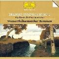 Brahms: Symphony No.2 Op.73, Academic Festival Overture Op.80 (9/1982) / Leonard Bernstein(cond), VPO