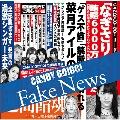 Fake News<Type-B>