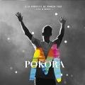 A La Poursuite Du Bonheur Tour (Live A Bercy) [CD+DVD]