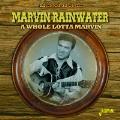 A Whole Lotta Marvin
