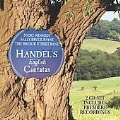 Handel : English Cantatas & Songs -So Pleasing the Pain Is, With Roving, etc / Nicki Kennedy(S), Sally Bruce-Payne(A), Brook Street Band