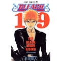 BLEACH -ブリーチ- 19