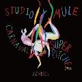 Carnaval Feat Miyako Koda (Superpitcher Remixes)