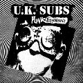 Punk Essentials [CD+DVD]