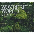 WONDERFUL WORLD [CD+DVD]<初回限定盤>