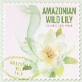 SCENTS OF THE WORLD AMAZONIAN WILD LILY
