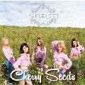 Cherry Seeds<通常盤>