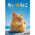 あいねこ 世界5大猫スポット・相島のねこたち