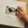 ワンダフルライフ オリジナル・サウンドトラック