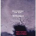 Schubert: Winterreise D.911