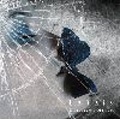 Disappears / Melody. [CD+DVD]