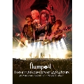 flumpool 5th Anniversary Special Live「For our 1,826 days & your 43,824 hours」at 日本武道館