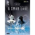 エレガンス・ジ・アート・オブ アレクサンダー・エクマン: 「白鳥の湖」