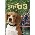 ビーグル犬 シャイロ3 -最終章- 特別版