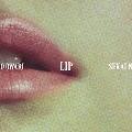 LIP<通常盤>