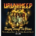 Raging Through The Silence - The 20Th Anniversary Concert [2CD+DVD]