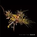Good New Times [LP+CD+写真集]
