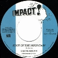 Foot Of The Mountain<限定盤>