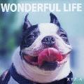 WONDERFUL LIFE<通常盤>