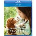 僕のワンダフル・ジャーニー [Blu-ray Disc+DVD]