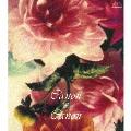カノン×カノン ~パッヘルベル・カノン・ヴァリエーション~ CD