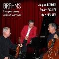 ブラームス: ピアノ三重奏曲集