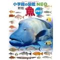 小学館の図鑑NEO [新版] 魚 DVDつき [BOOK+DVD]