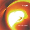 Fallen Angel (Special Remastered Edition) [CD+2LP]<限定盤>