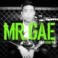 Mr. Gae: 1st Mini Album