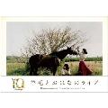 羊毛とおはなのライブ10th Anniversary Live「うたの手紙~ありがとう~」