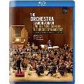 ドキュメンタリー「ザ・オーケストラ~クラウディオ・アバドとモーツァルト管弦楽団の音楽家たち」