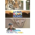 ムツゴロウのゆかいな動物図鑑 「ネコ科の大型動物」/「ネコのルーツと不思議」