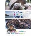 ムツゴロウのゆかいな動物図鑑 「カメ ~産卵と長生きの秘密~」/「ヘビ ~誕生と生態の不思議~」
