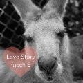 Love Story/もう一度。 [CD+DVD]