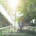 街路樹 [CD+DVD]<初回生産限定盤>