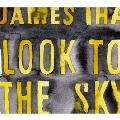 ルック・トゥ・ザ・スカイ<レコードの日対象商品/限定盤>